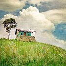 Little Shack in Colombia  by BobbiFox