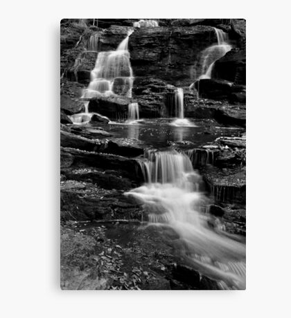 Rick's Hidden Falls Canvas Print