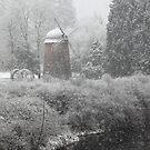 Snowing by Olga Zvereva
