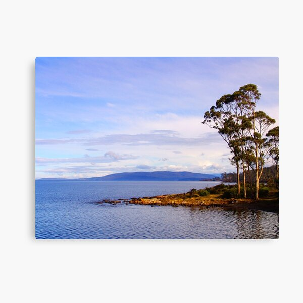 Trees by the coast Canvas Print