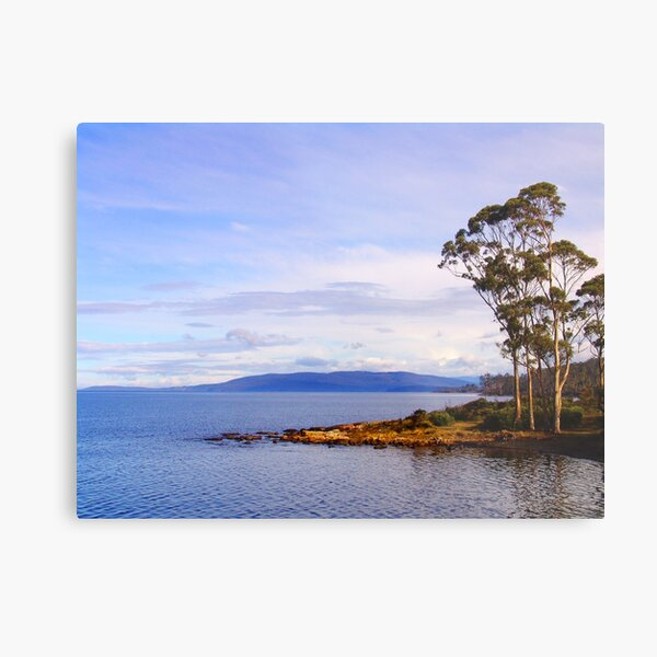 Trees by the coast Metal Print