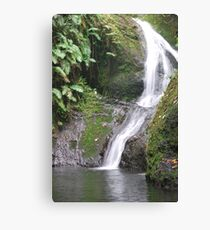 Rarotonga waterfall Canvas Print