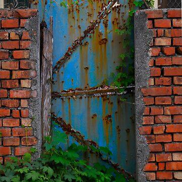 The blue door by suzichendesign