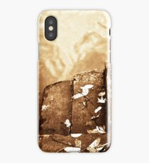 Down to the River iPhone Case/Skin