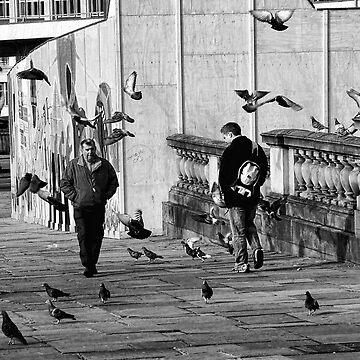 Free as a Bird by Zedder