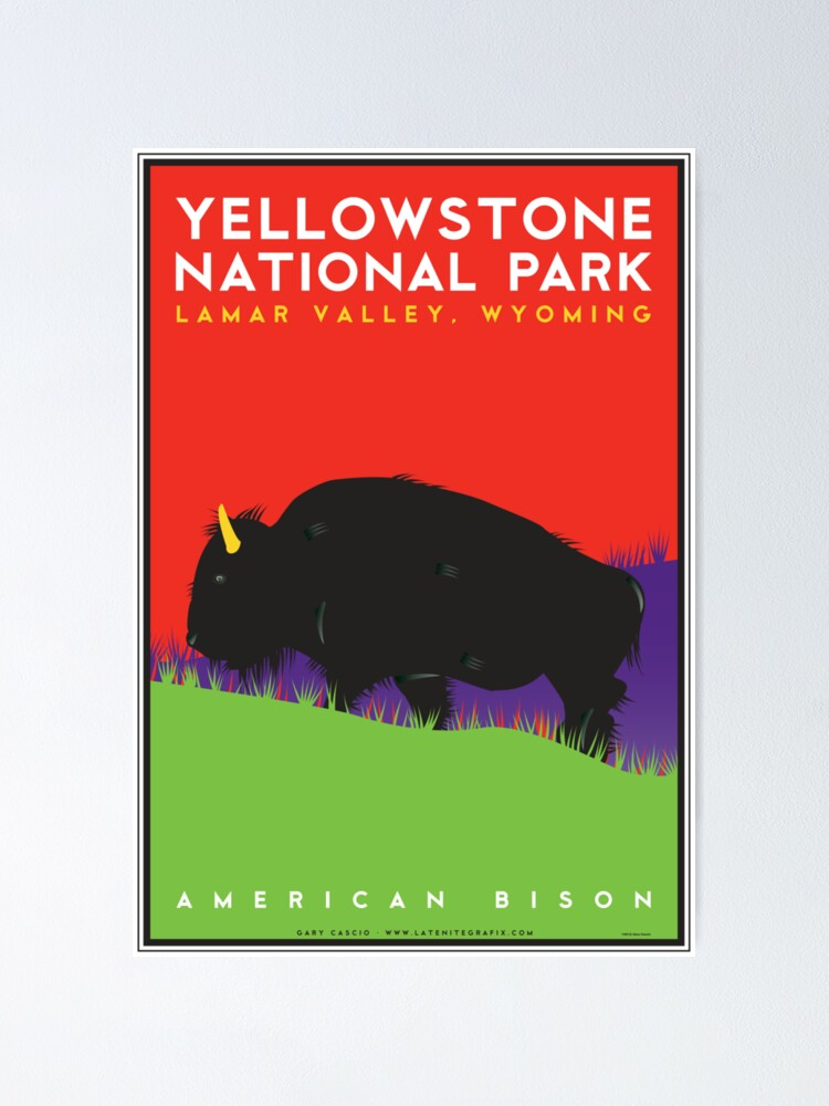 Alternate view of Yellowstone National Park: American Bison Poster