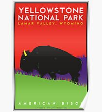 Yellowstone National Park: American Bison Poster