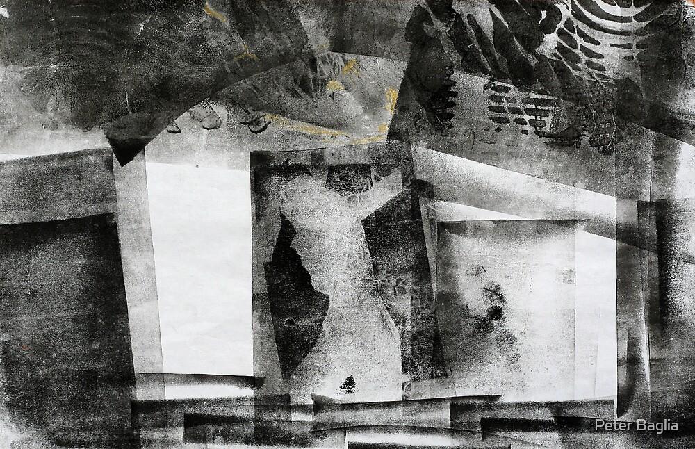 Venus Trapped by Peter Baglia