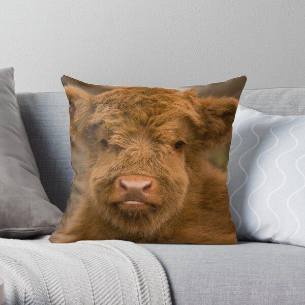 Cute Calf  Highland Cow Scottish Highlands. Throw Pillow