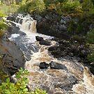 Rogie Falls, Scotland by Vicki Spindler (VHS Photography)