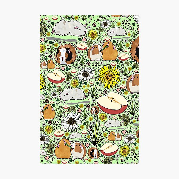 Guinea Pigs in Green  Photographic Print