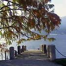 Private Pier on the Lake by sstarlightss