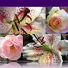 Roses and Lilies Collage in Reflection Frame by BlueMoonRose