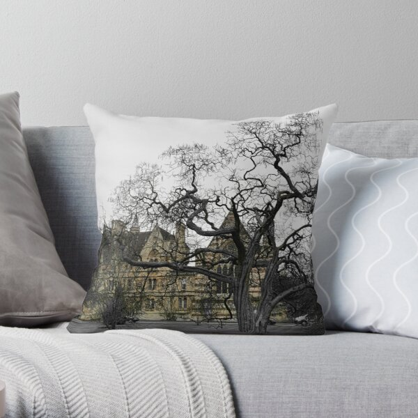 Oxford University motto - Lord is my light Throw Pillow