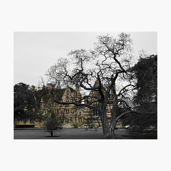 Oxford University motto - Lord is my light Photographic Print