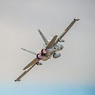 RAAF Hornet by Mark Greenmantle