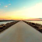 Road To Infinity by Sharon Woerner