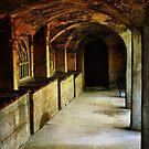 Arches # 2 by Debra Fedchin