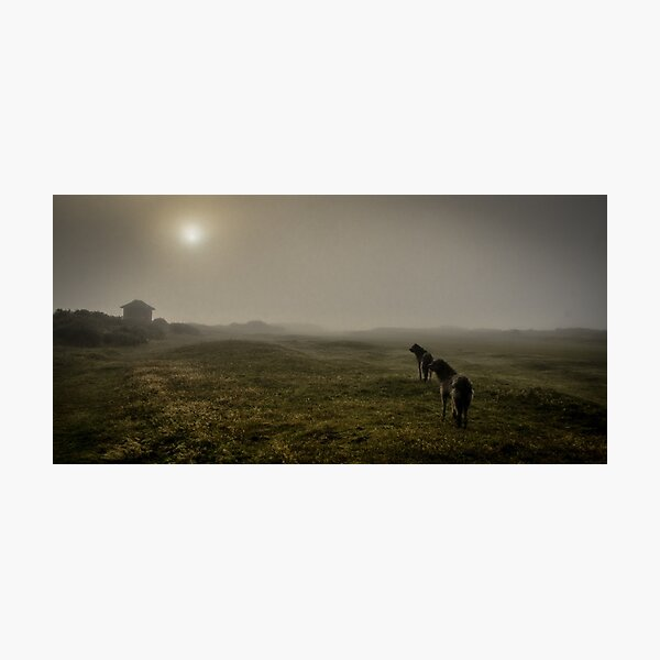 huters in the mist Photographic Print