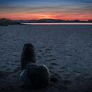 sunset view by joak