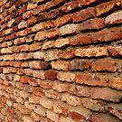 The 'Lakhori' wall by redscorpion