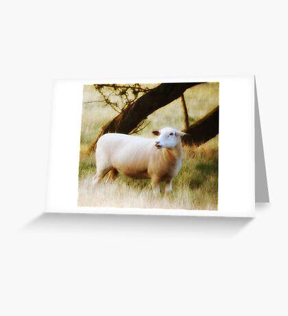 The Sheep Greeting Card