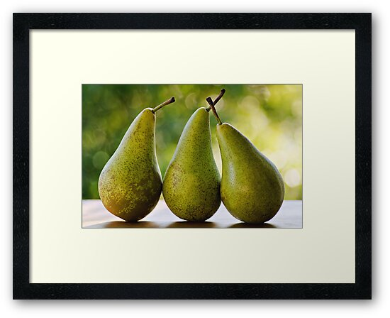Pears by Michelle McMahon