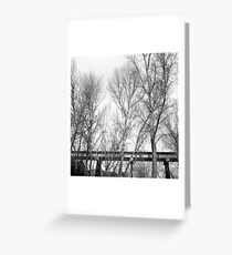 Tracks in the Trees Greeting Card