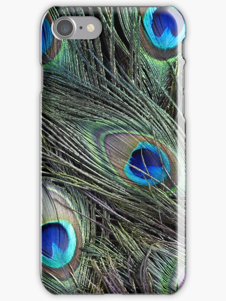 Peacock feathers detail by Greg Morris
