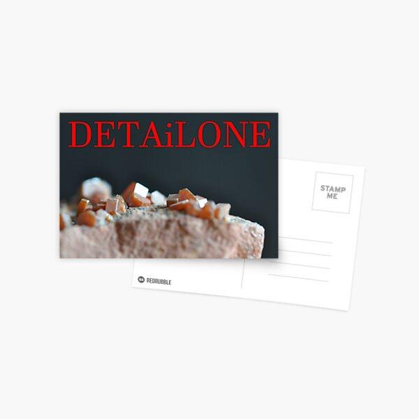 Detailone sticker Postcard