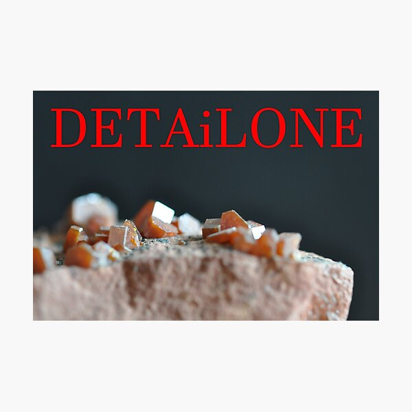Detailone sticker Photographic Print