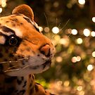 Stuffed Leopard by ppcpetphotos