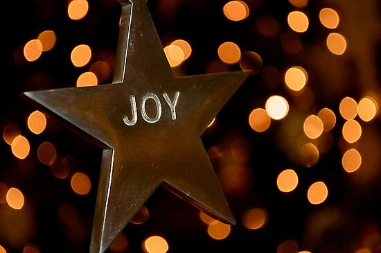 Joy by ppcpetphotos