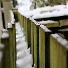 snowy trail  by co0kiem0nster