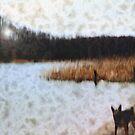 Wood, Dog and Sea by Ulf Buschmann