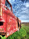 Abandoned Chevy Truck by Marcia Rubin