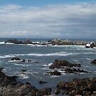Pacific Grove, California by worldwideart