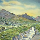 Roaring Ghyll, Honister Pass by Glenn Marshall