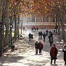 Madrid Park stroll by Esther  Moliné