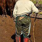 The Gaucho by photograham