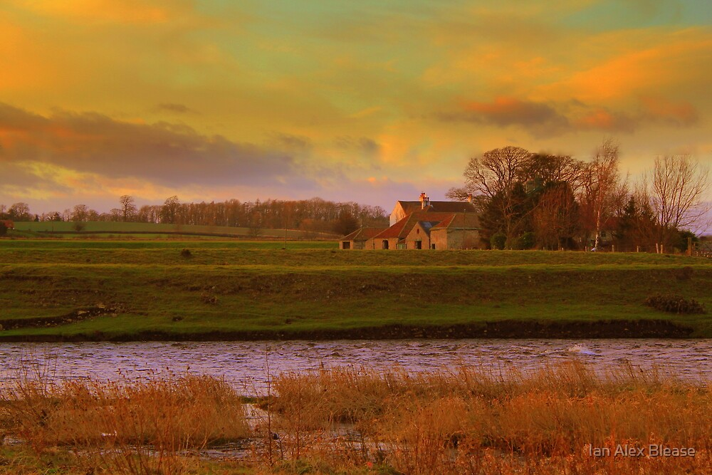 Holme House, High Coniscliffe. Late January Afternoon by Ian Alex Blease