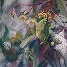 Ironbark in Blossom by Lynda Robinson