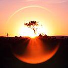 Sunrise Circle by tracyleephoto