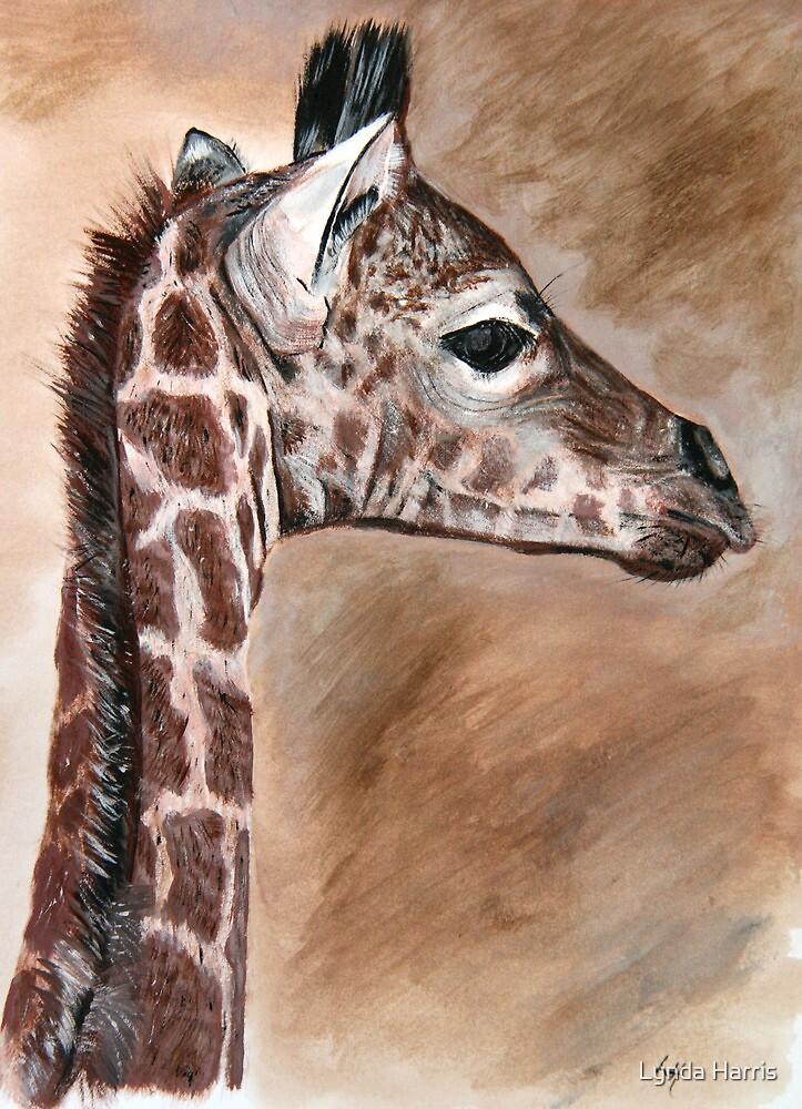 Krys's little African prince by Lynda Harris