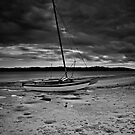 Beached - mono by bazcelt
