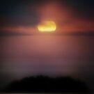 sunchaser by Anthony Mancuso