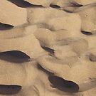 The Shadows in Sand by Alex Colcheedas