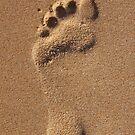 Footprint by Alex Colcheedas
