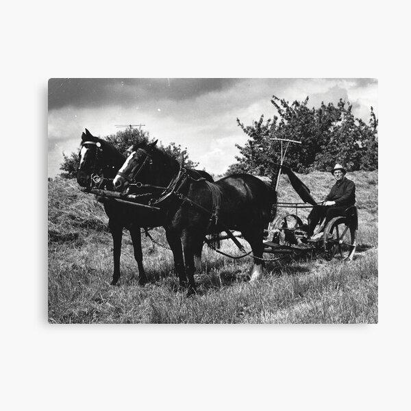 Vintage Foto - Bauer mit Pflug Leinwanddruck