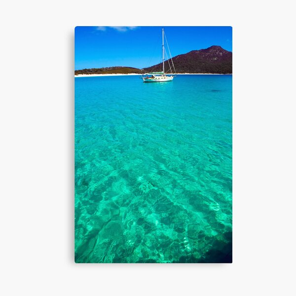 turquoise blue Canvas Print